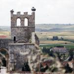 Palenzuela - Iglesia de Santa Eulalia 2